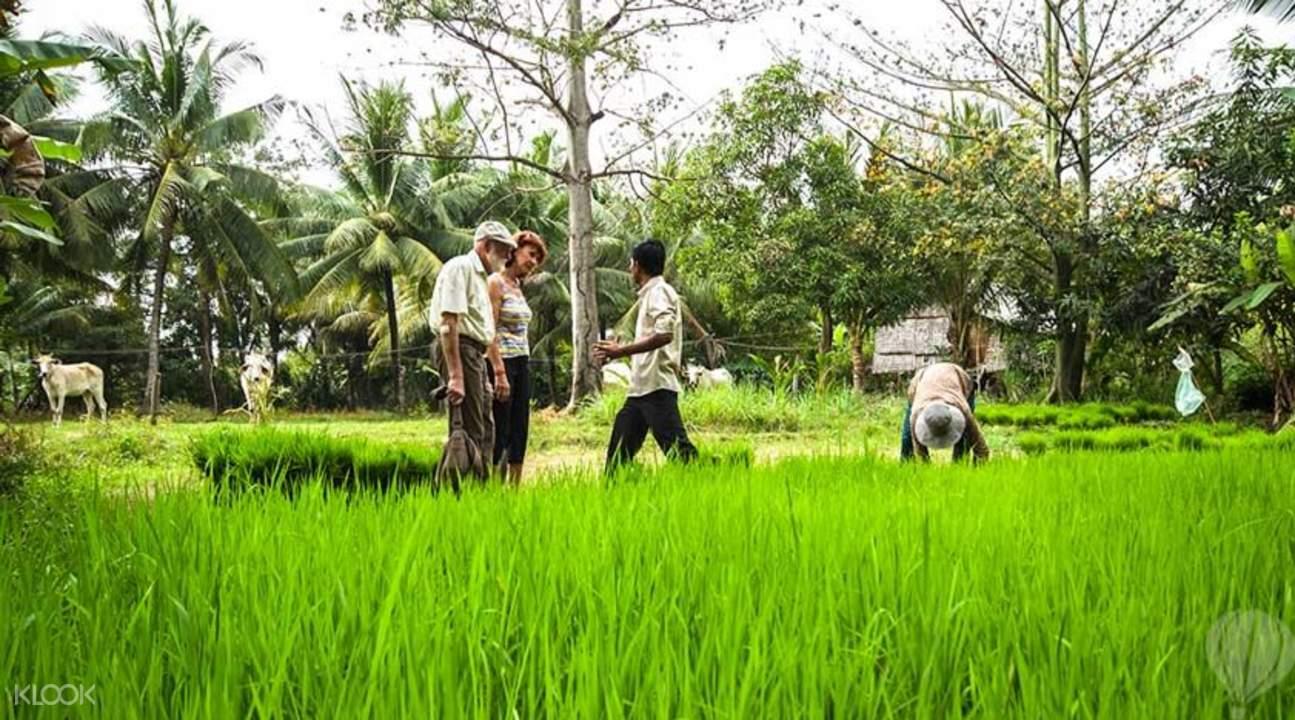 甲蟲村農民生活體驗