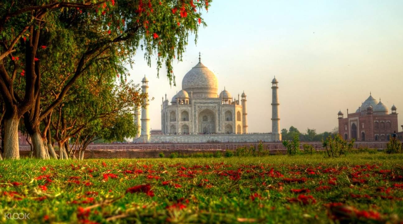 Taj Mahal with lush greens
