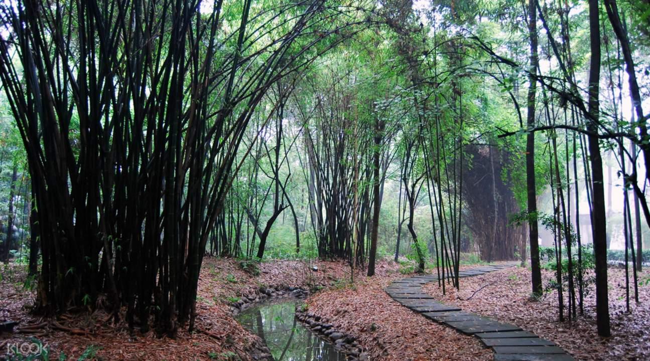 Chengdu Dufu Thatched Cottage ticket