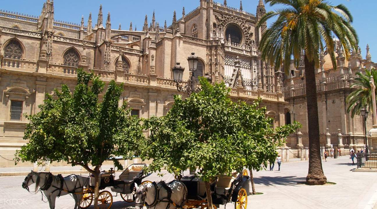 Cathedral of seville close up