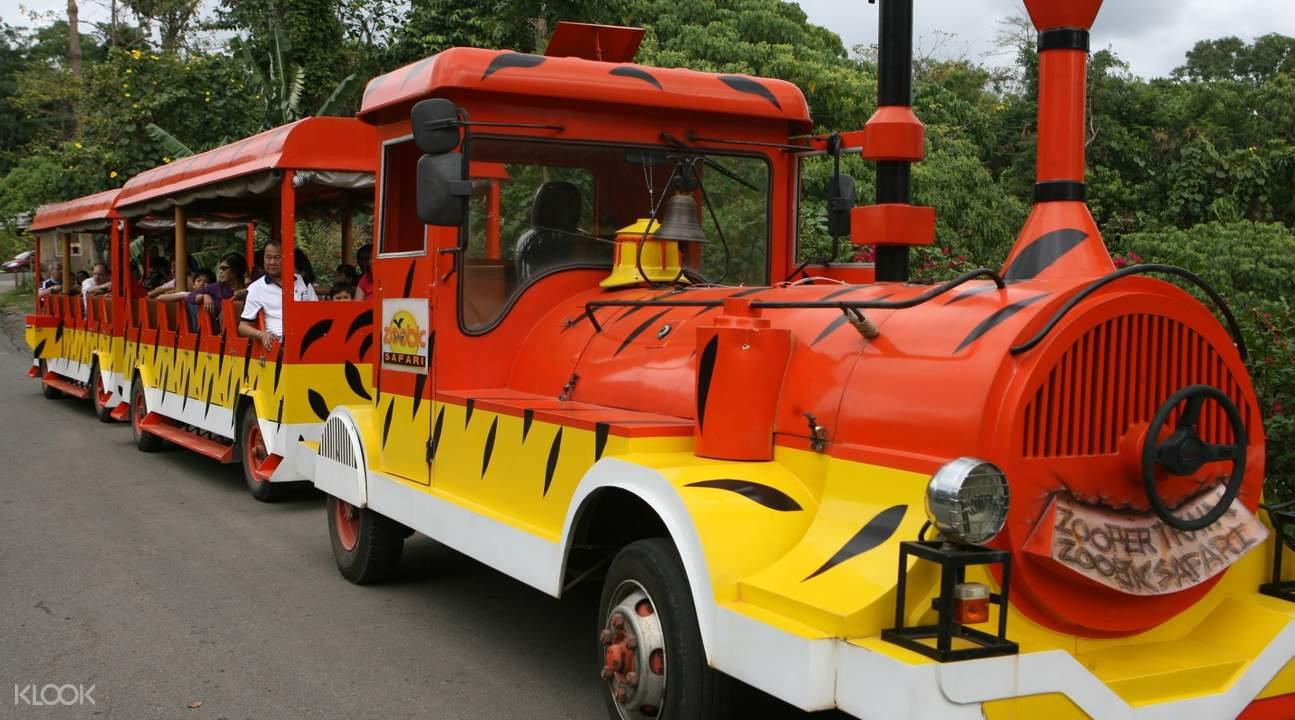 Zoobic Train at Zoobic Safari in Subic