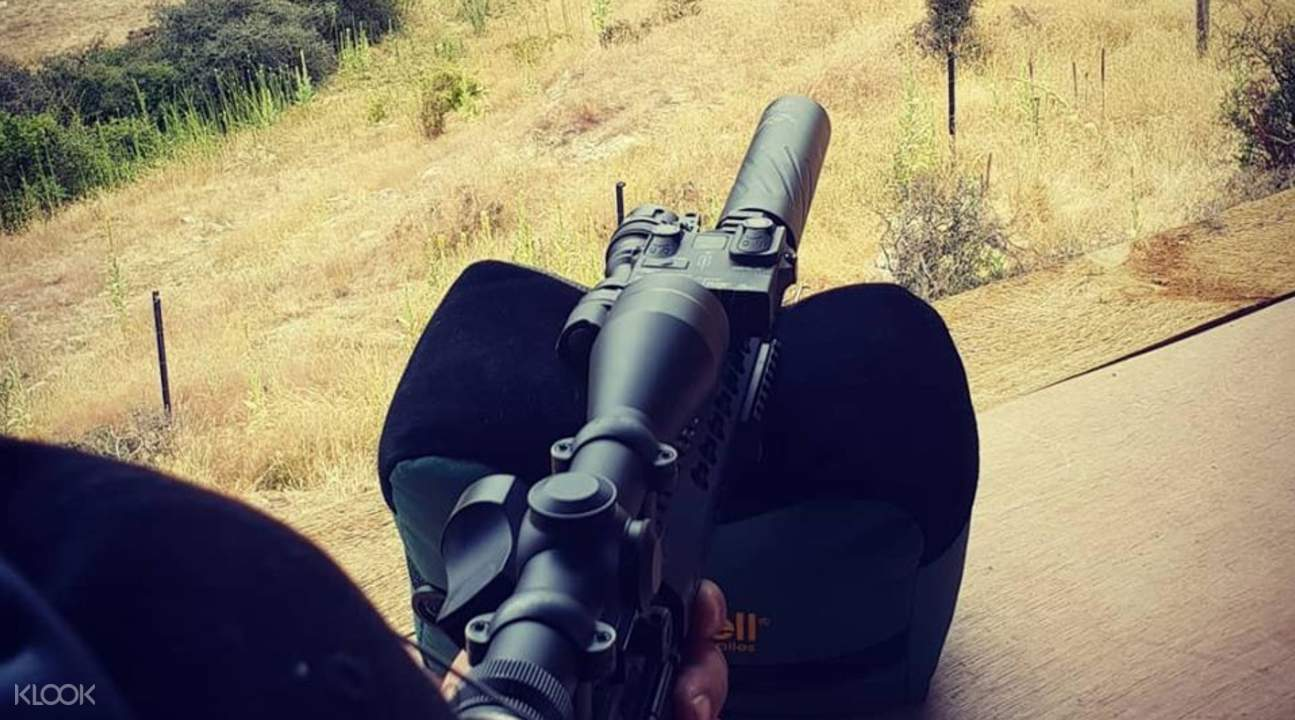 rifle aiming at a random tree