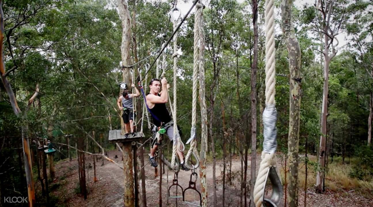 rope activities treetop challenge