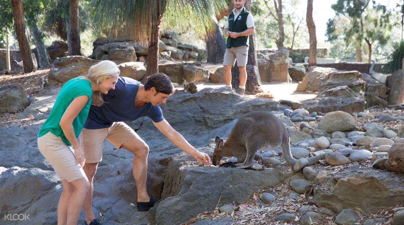 Zoo in Sydney