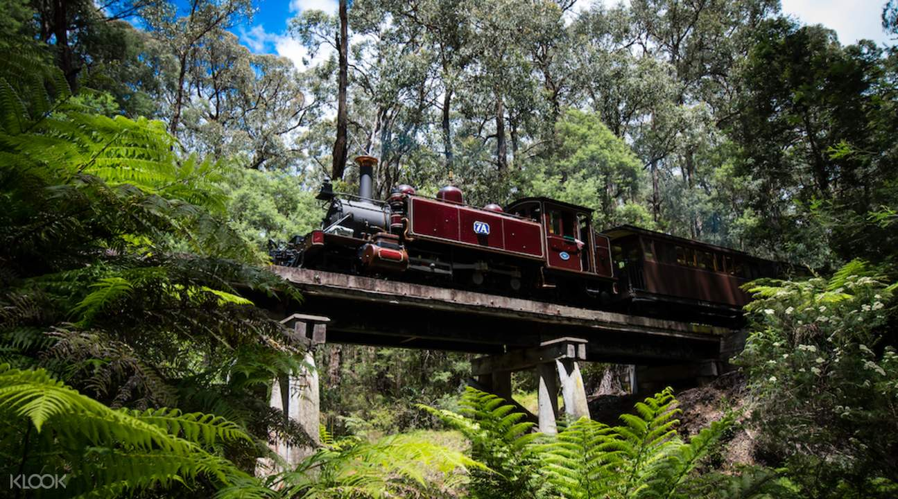 puffing billy train tickets