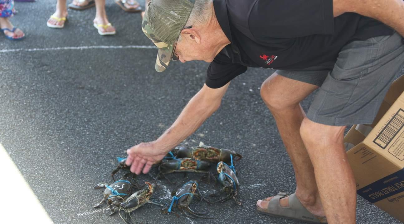 catch a crab cruise