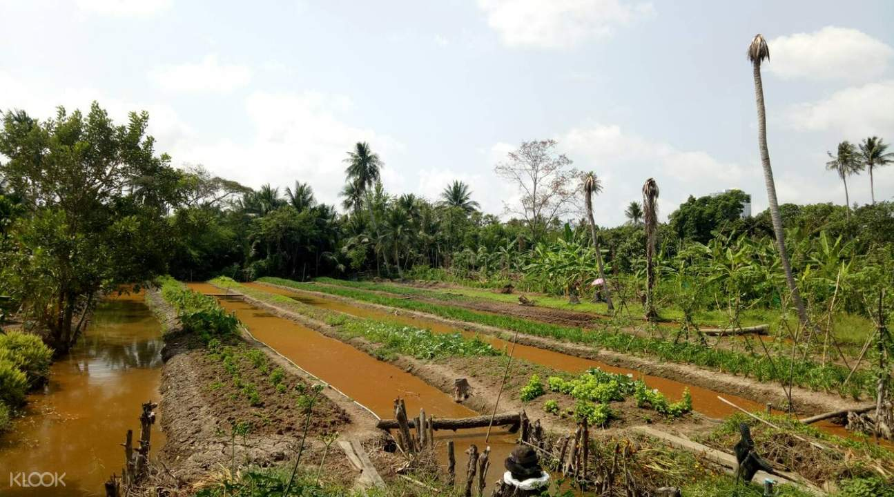 bangkok countryside