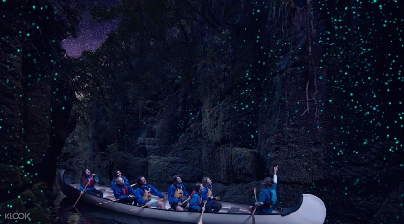 guide pointing at glow worms in canoe experience rotorua