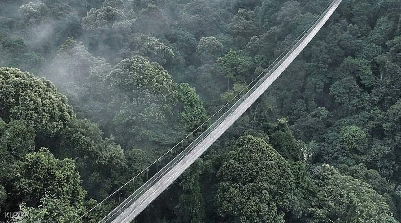 top view of suspended bridge