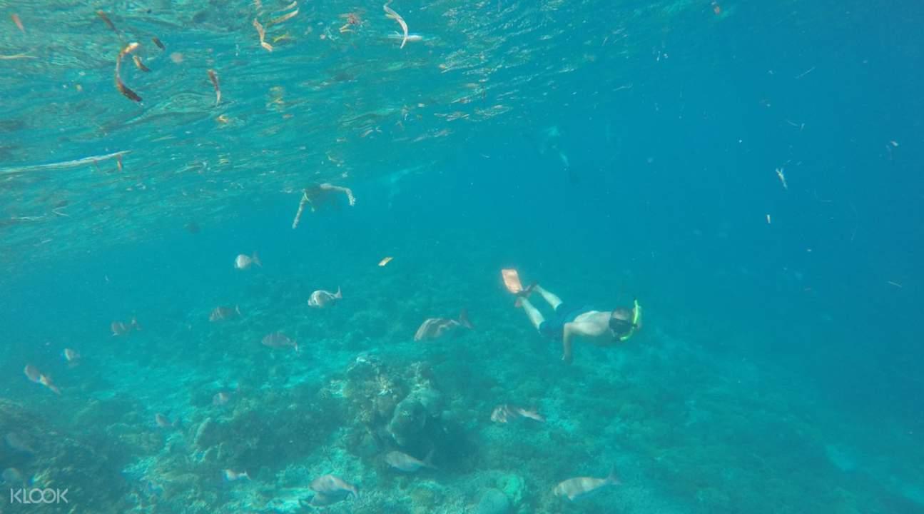 People snorkeling in blue waters of Gili Nanggu