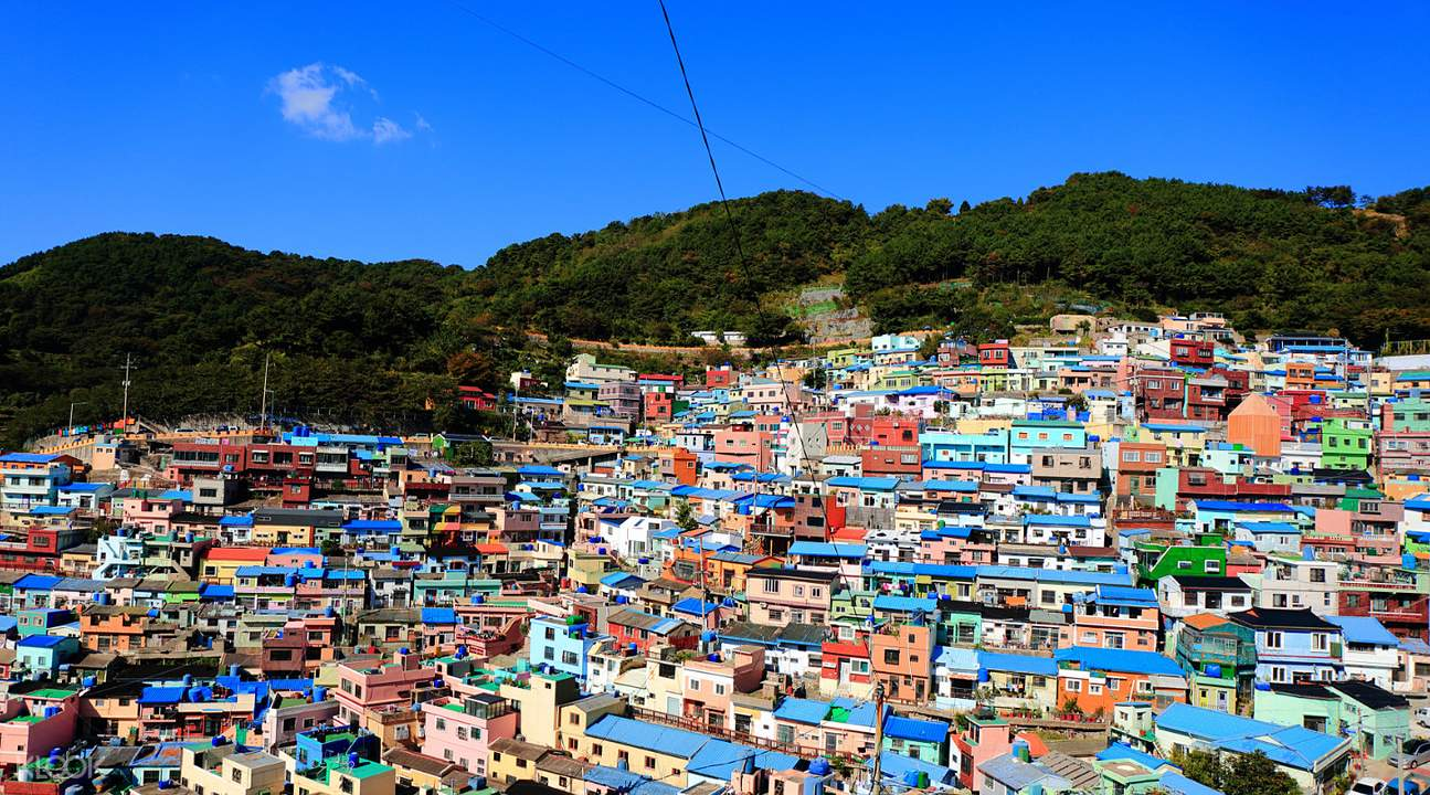 panoramic view at West Busan Half Day/Day Tour