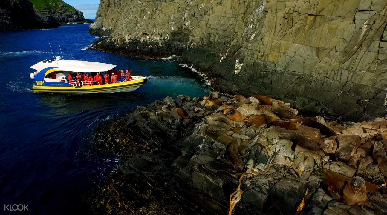 Bruny Island Cruises