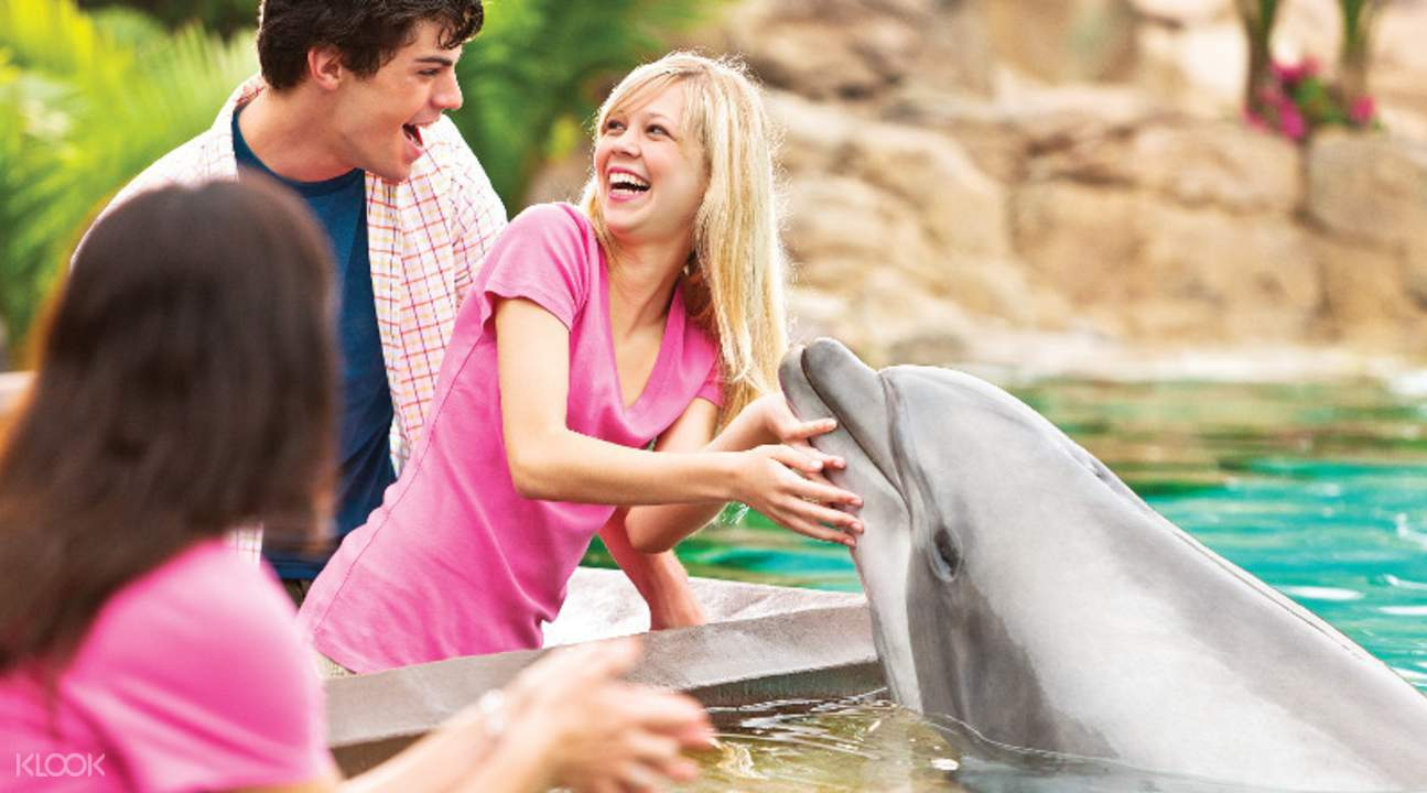 SeaWorld Orlando 1 Visit with All Day Dining