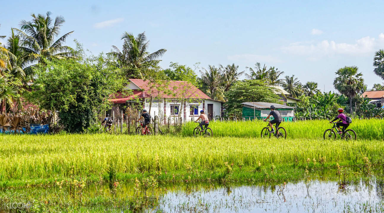 bikes cycling in siem reap countryside