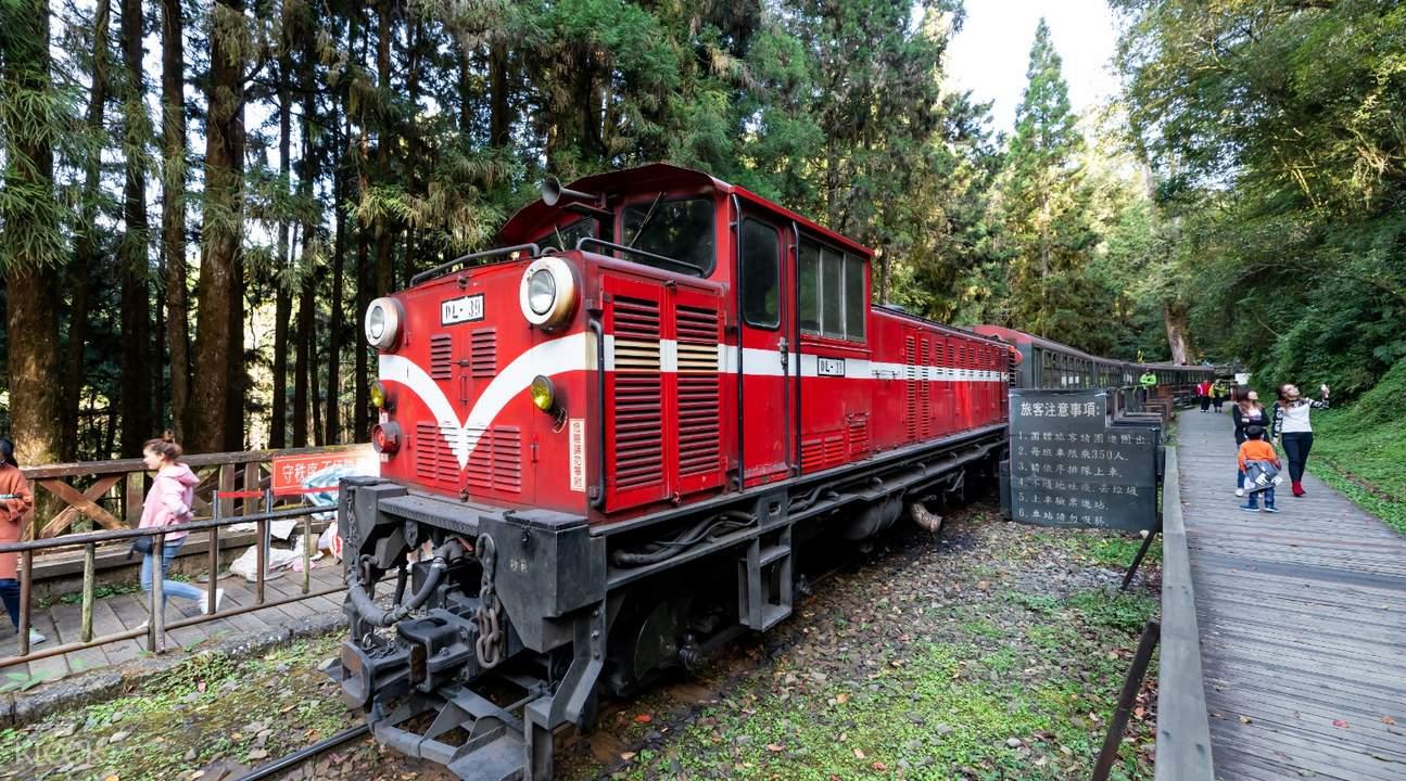 alishan forest railway train