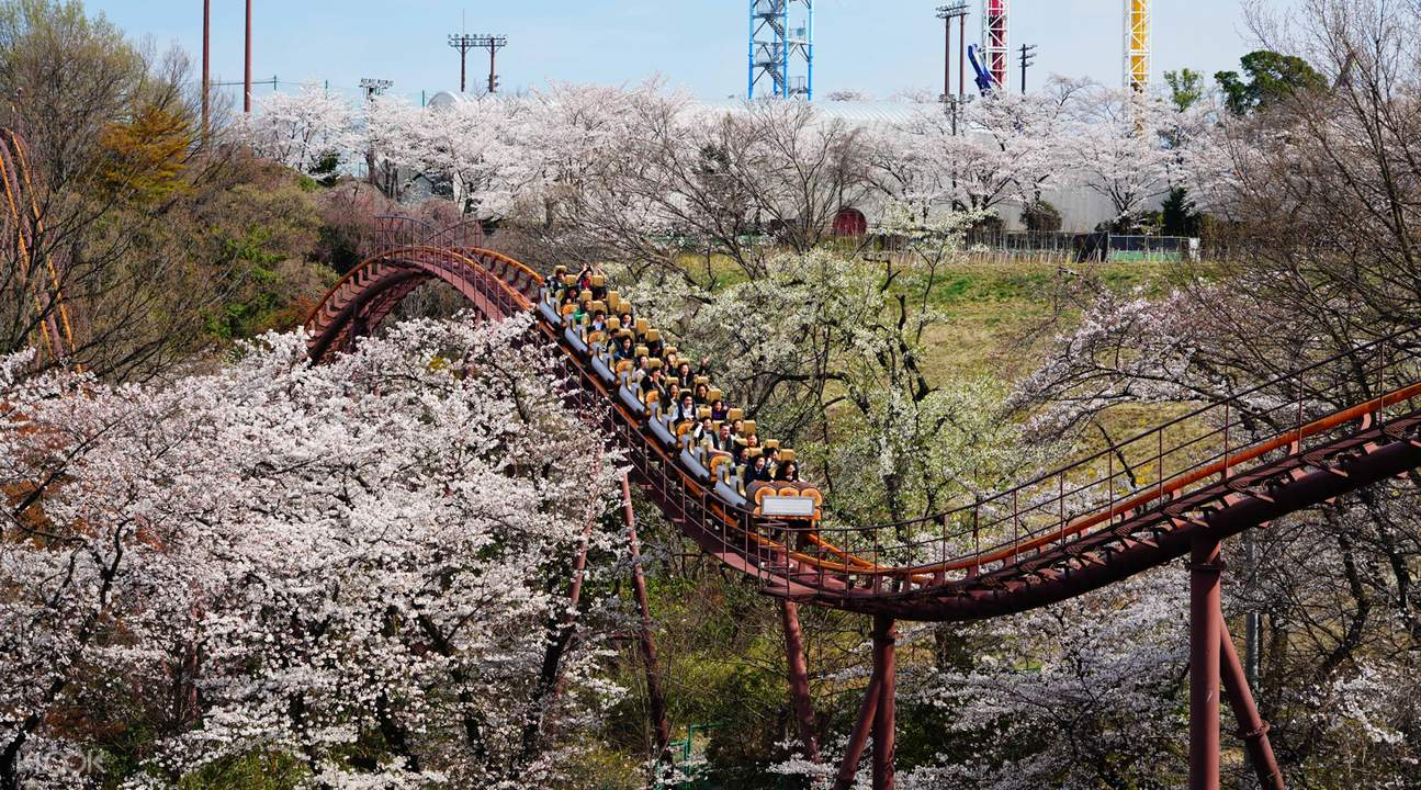 rollercoaster in yomiuriland