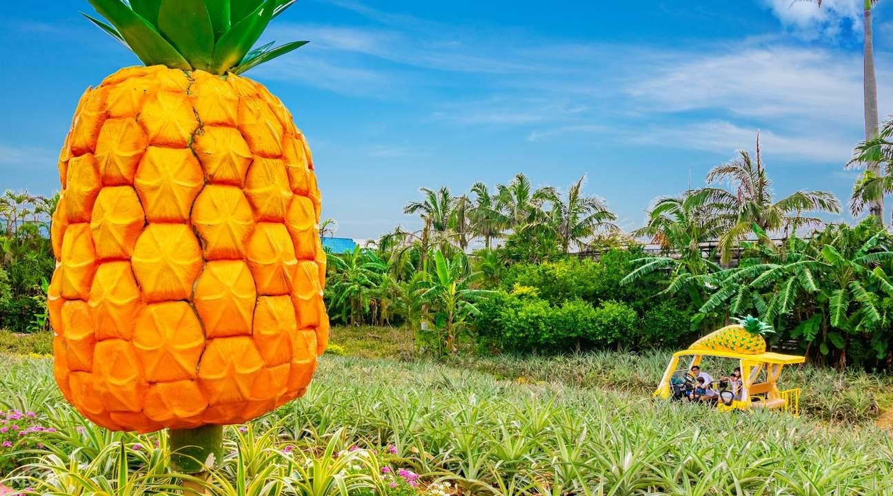 nago pineapple park, pineapple park okinawa, pineapple park okinawa japan, nago pineapple park ticket, nago pineapple park discounted ticket
