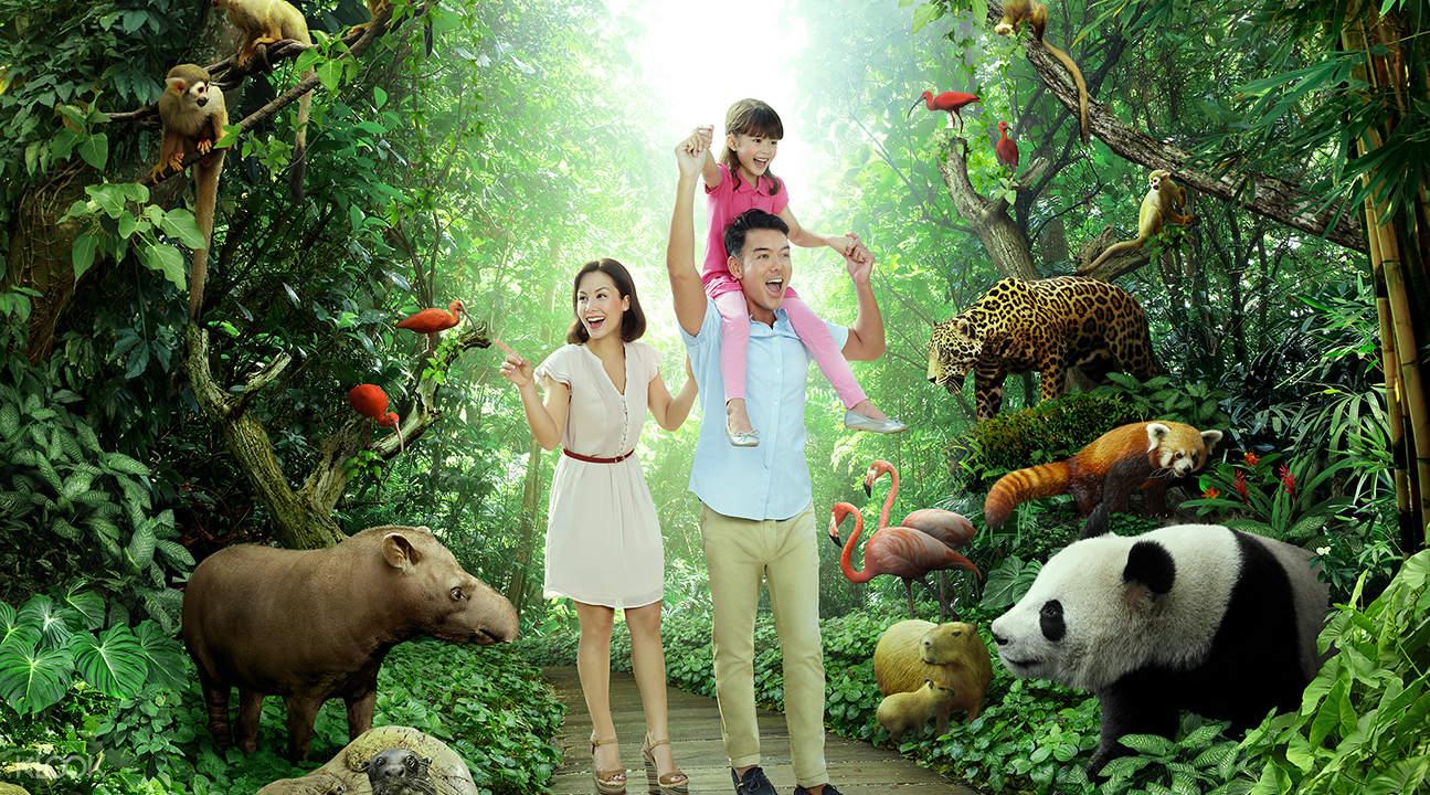 野生動物園私人接送新加坡