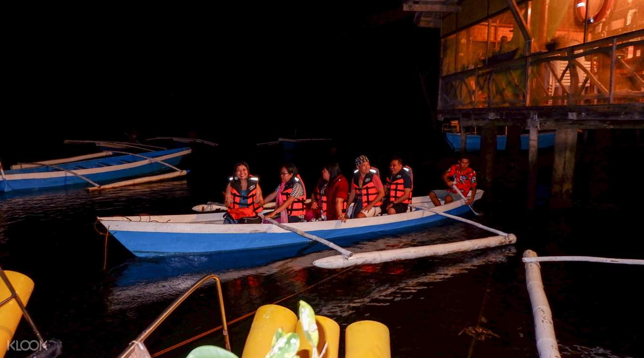 tour ngắm đom đóm trên thuyền iwahig