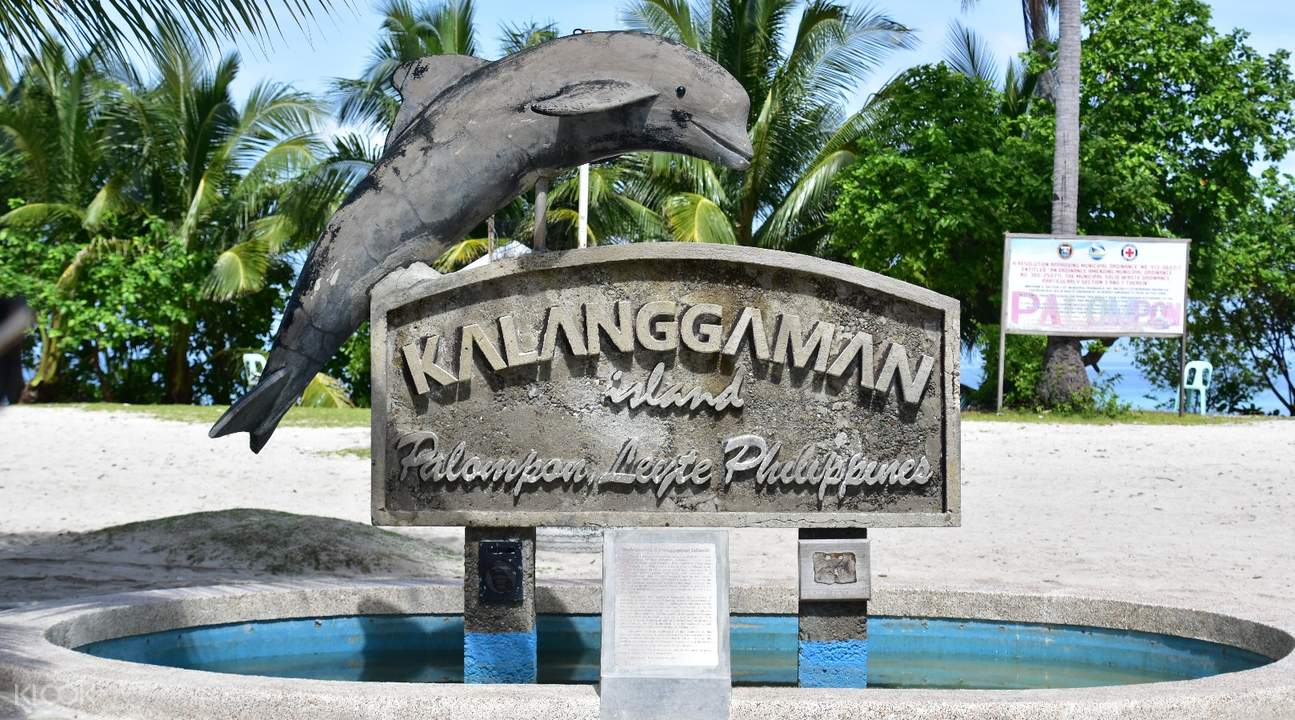 shared van transfers maya port cebu city mactan