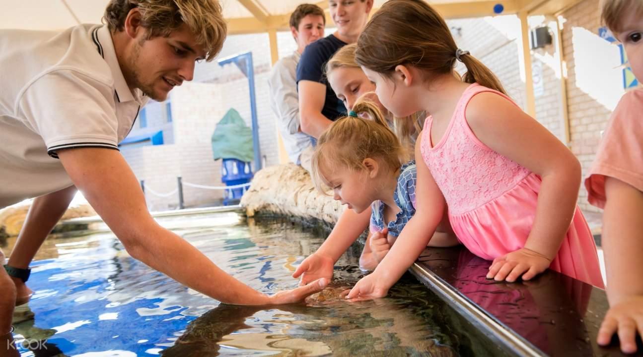 children enjoying the touch pool at The Aquarium Of Western Australia
