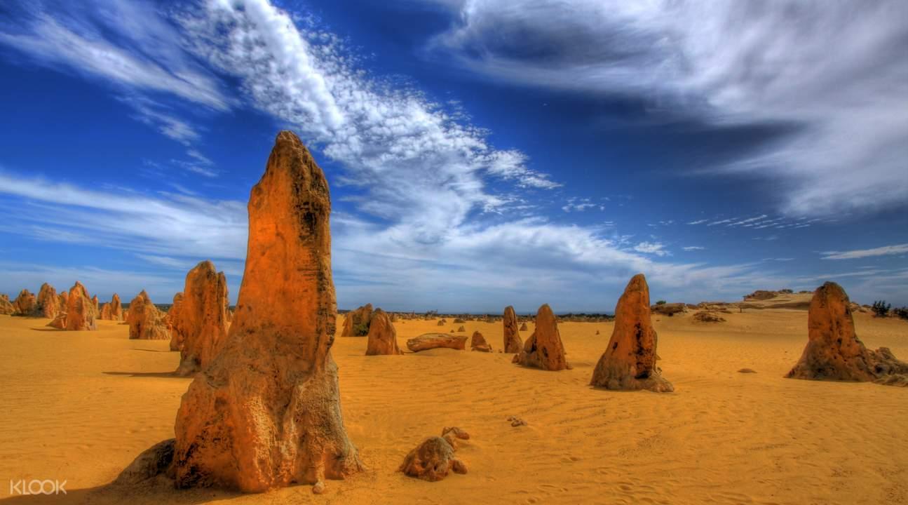 Pinnacles, Koalas & Sand Boarding 4WD Adventure