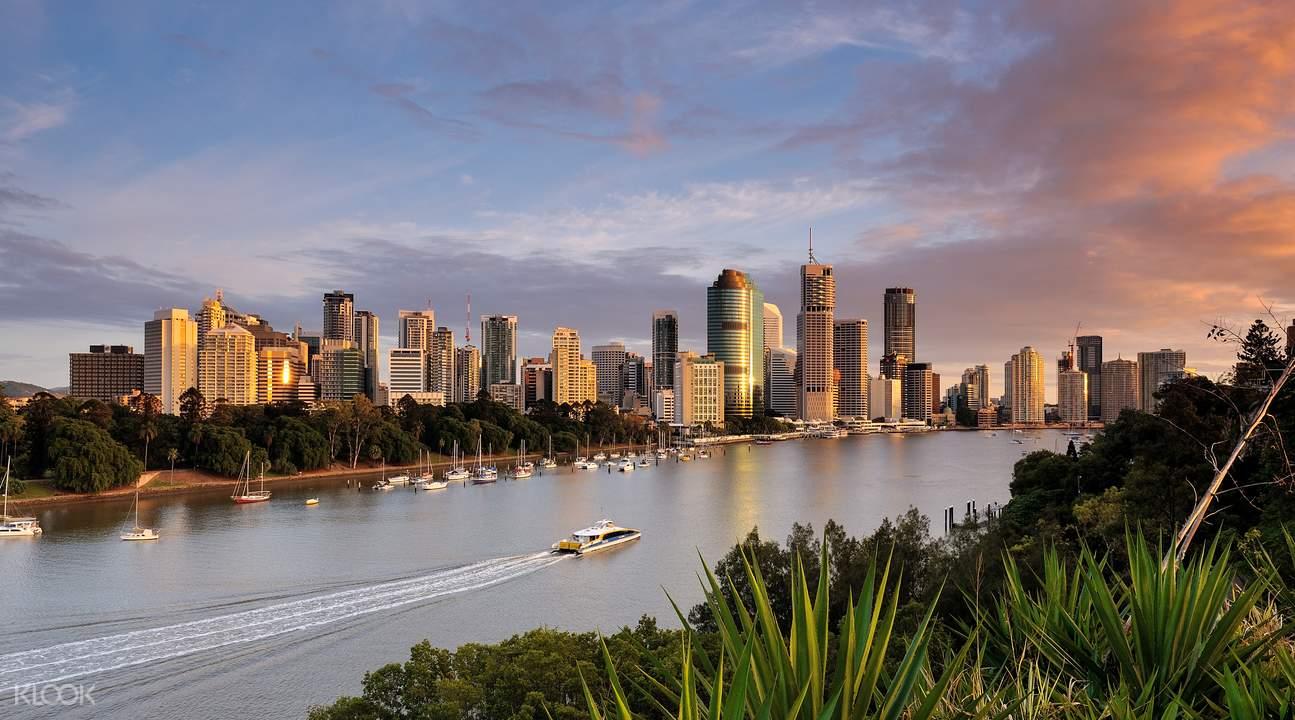 Guided Kayaking Tour in Brisbane