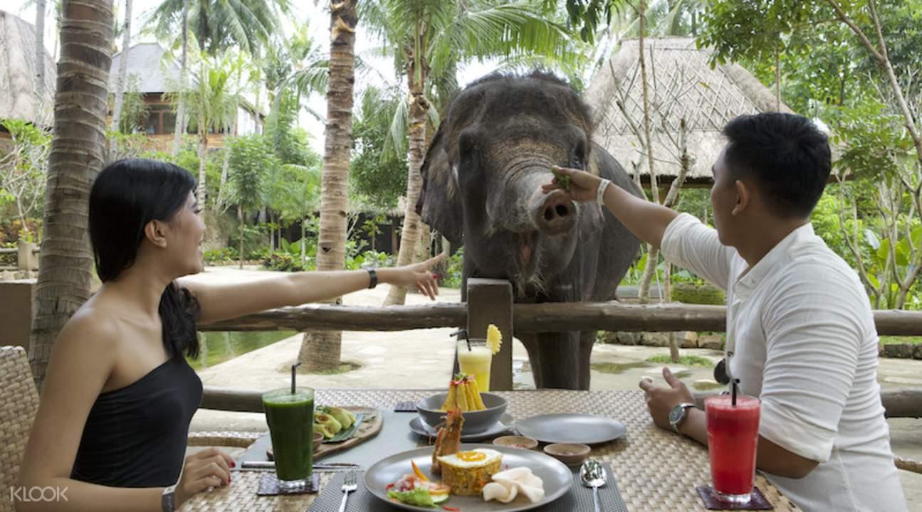 Tiket Lombok Wildlife Park (Harga Domestik)