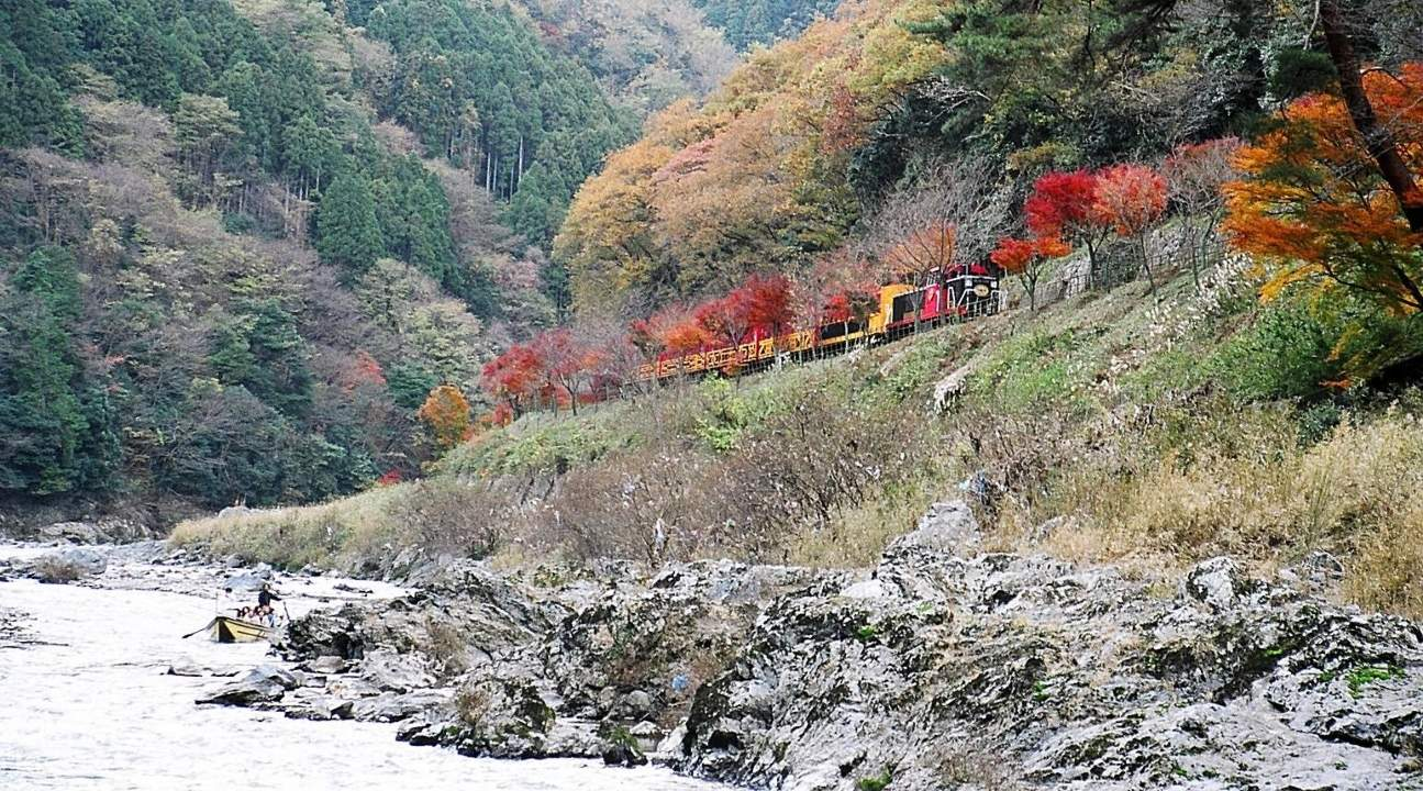 a view of the Sagano Romantic Train passing through an autumn foliage plus a view of of the Hozugawa River