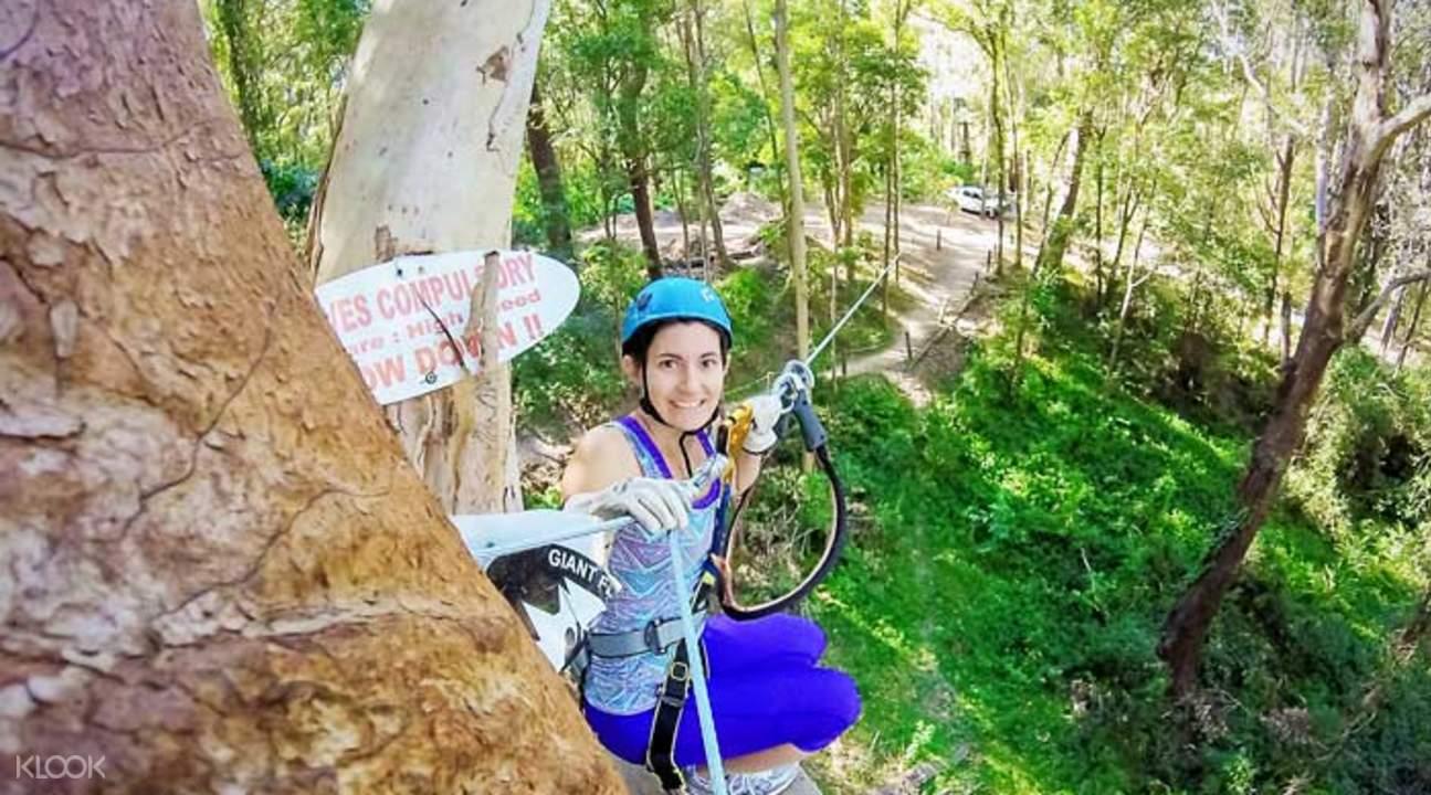 zipline treetop challenge