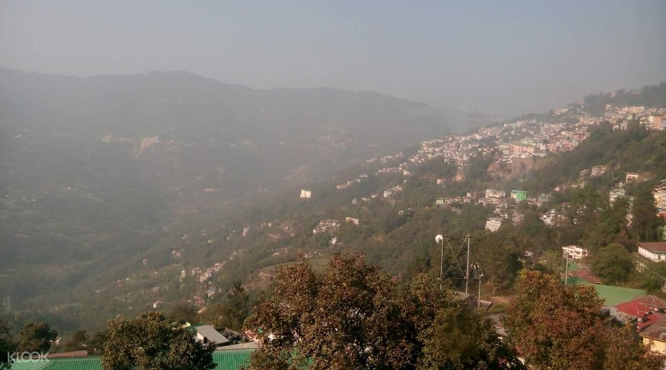 mist and trees in gangtok