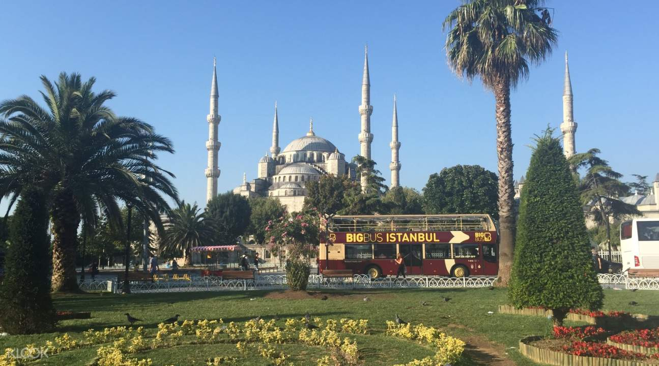 big bus next to trees in istanbul turkey