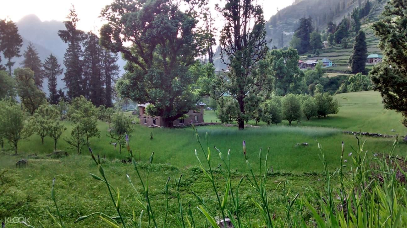 Grahan村