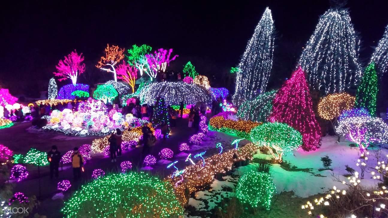 首尔小法国村,首尔南怡岛,首尔晨静树木园,韩剧经典外景地