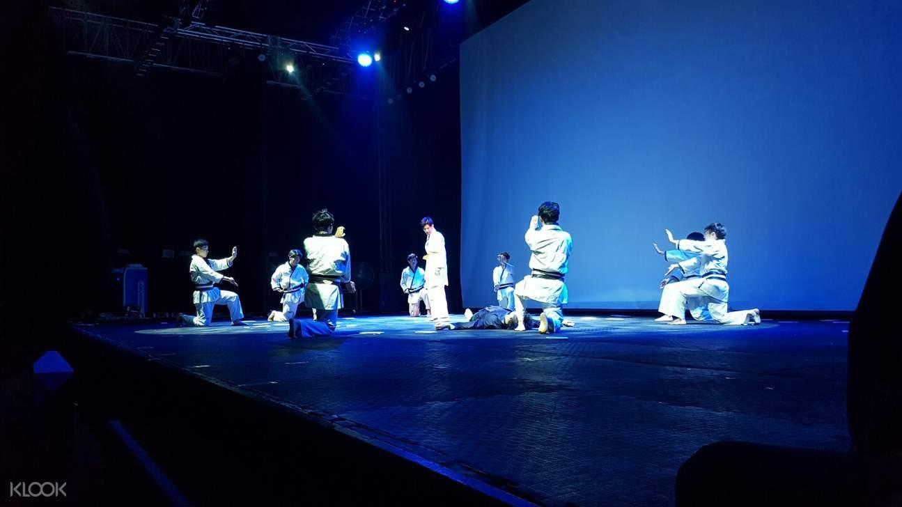 Taekwondo Show Ticket