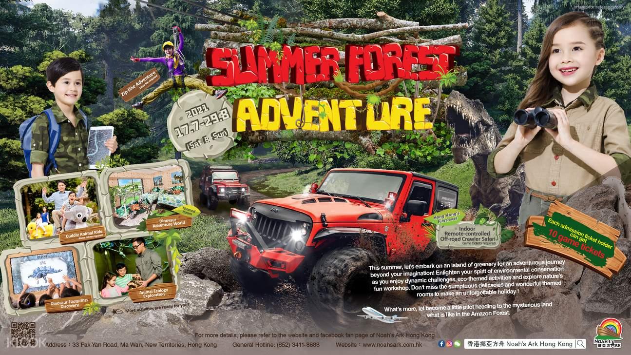 Summer Forest Adventure