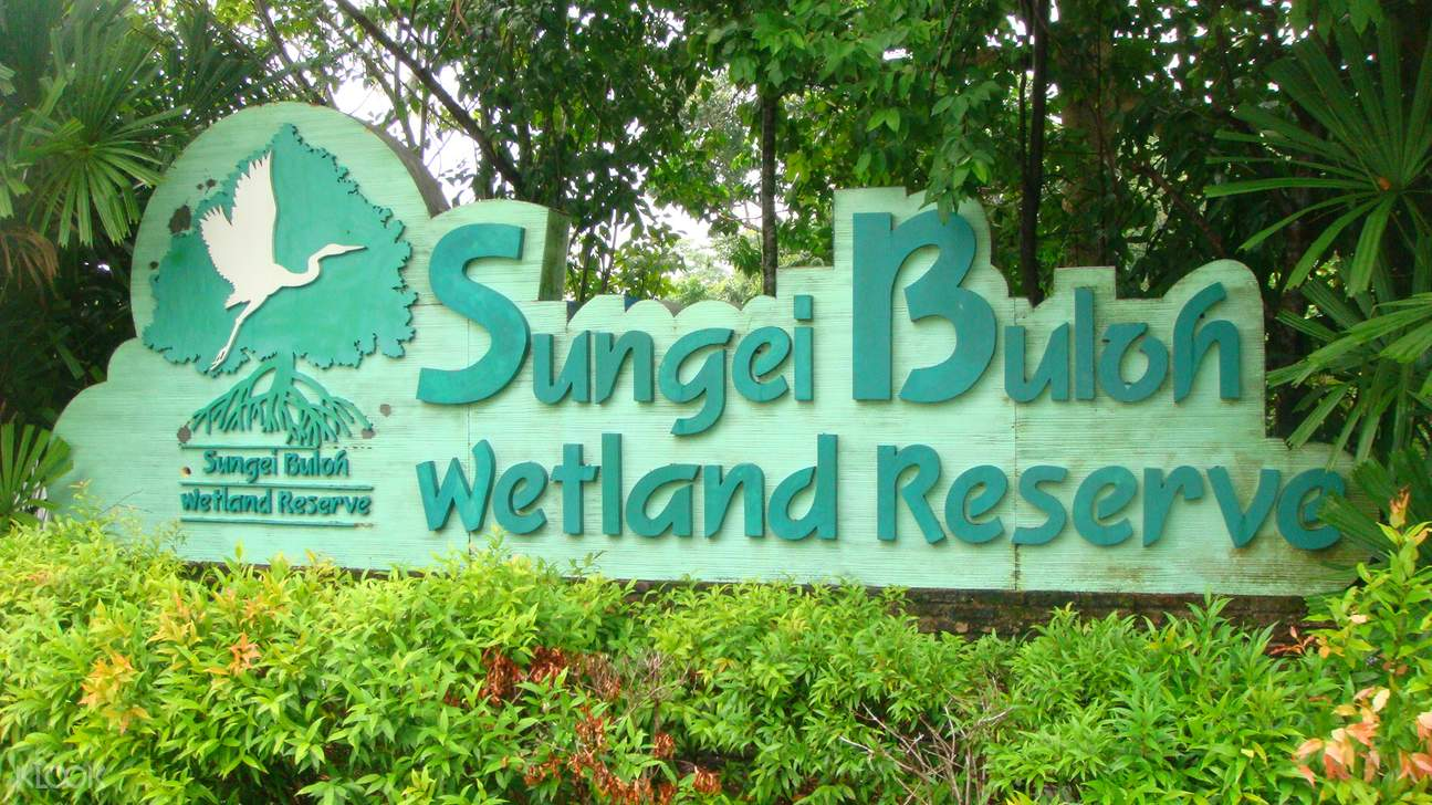 Half day tour @ Sungei Buloh Wetland Reserve Tour