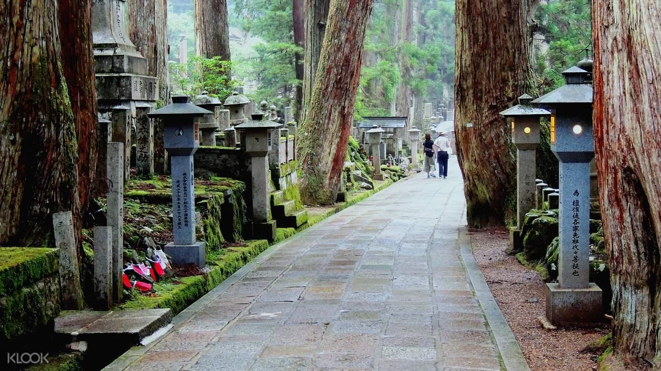 pathway in mount koya