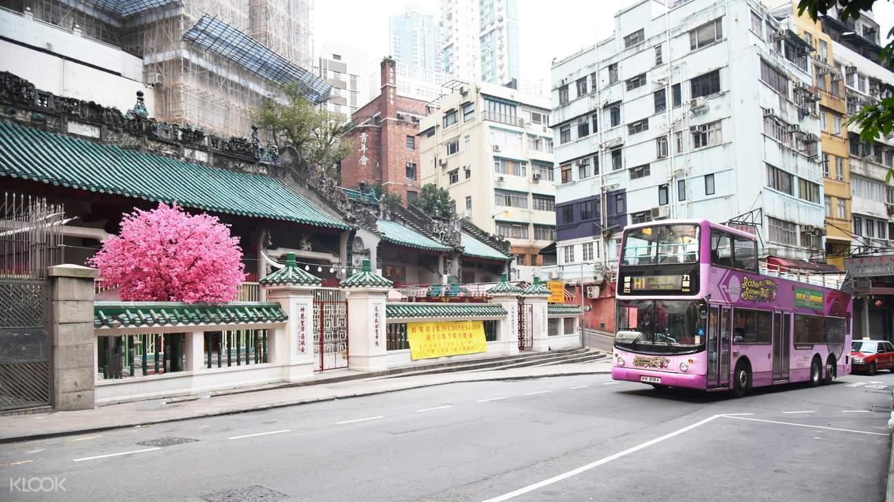 香港观光巴士通行票