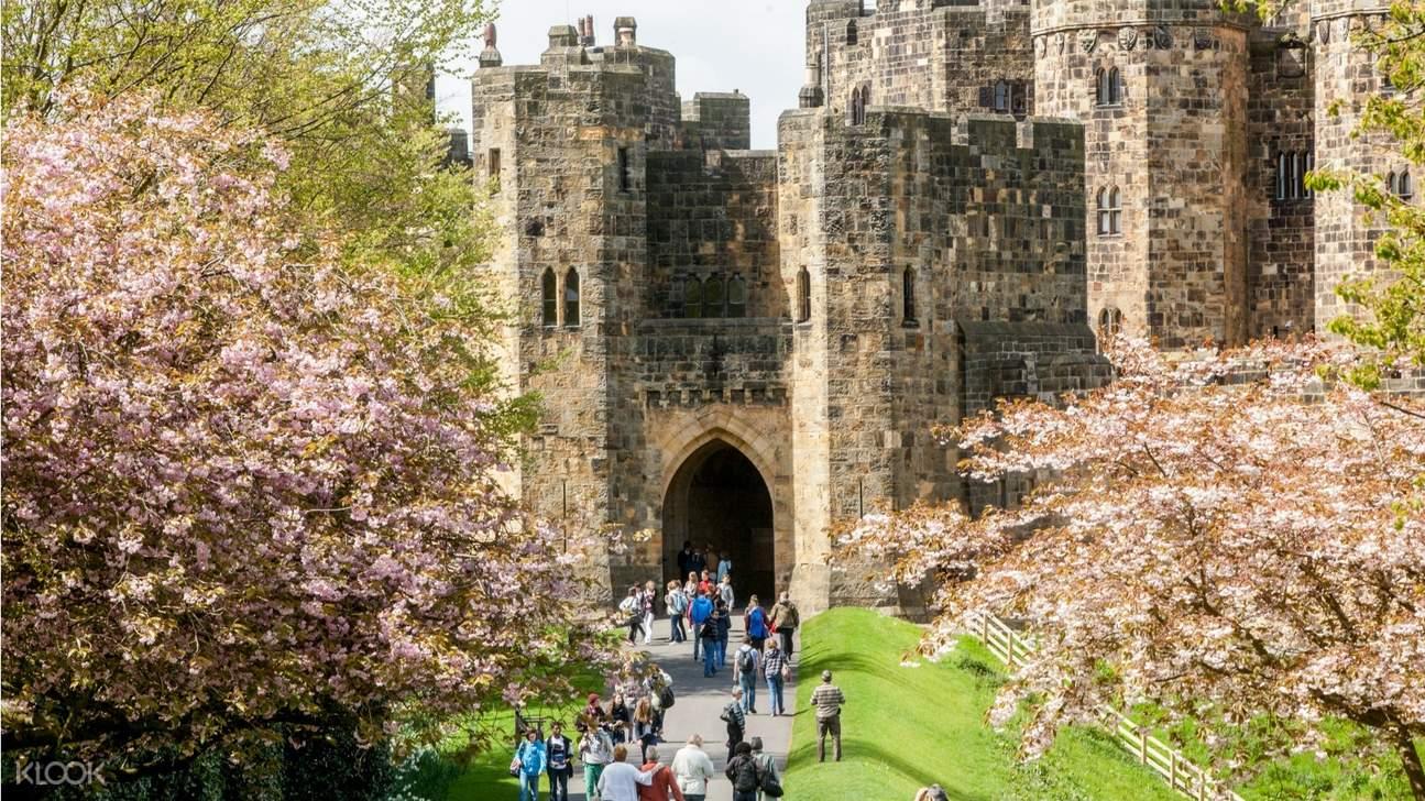 alnwick castle scottish borders tour