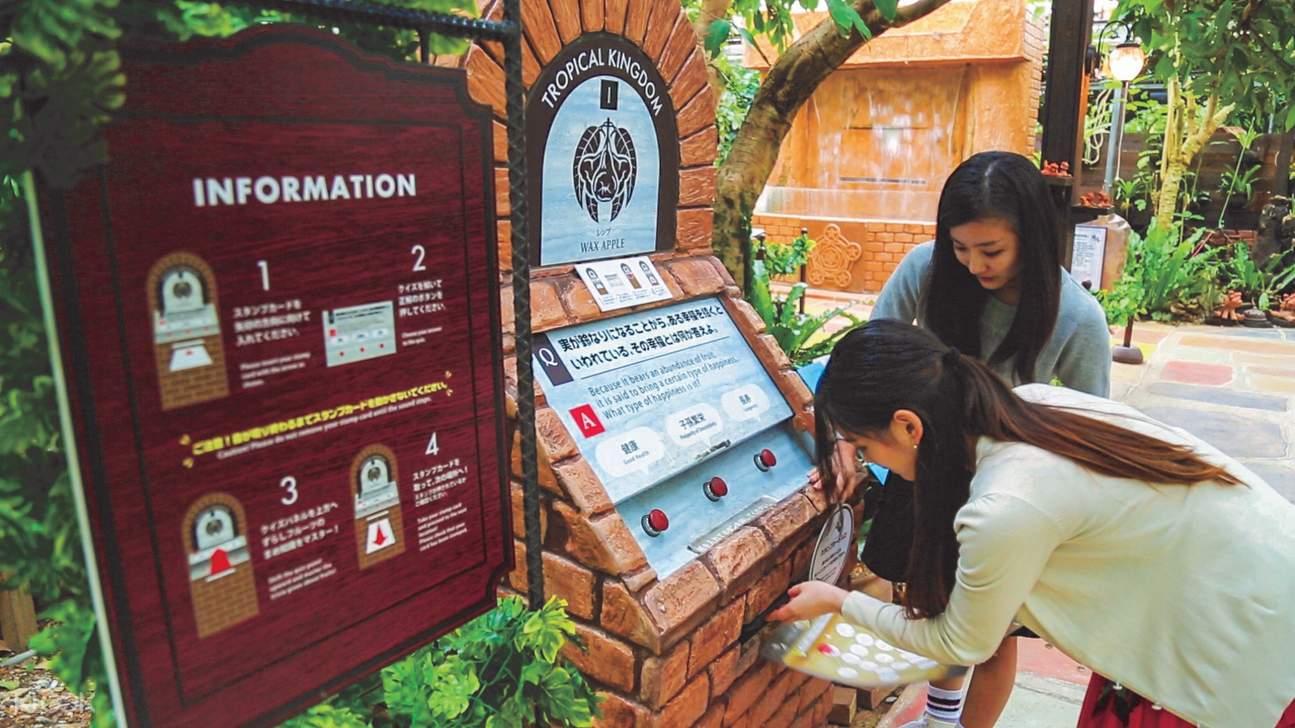 gaming kiosks in okinawa fruits land