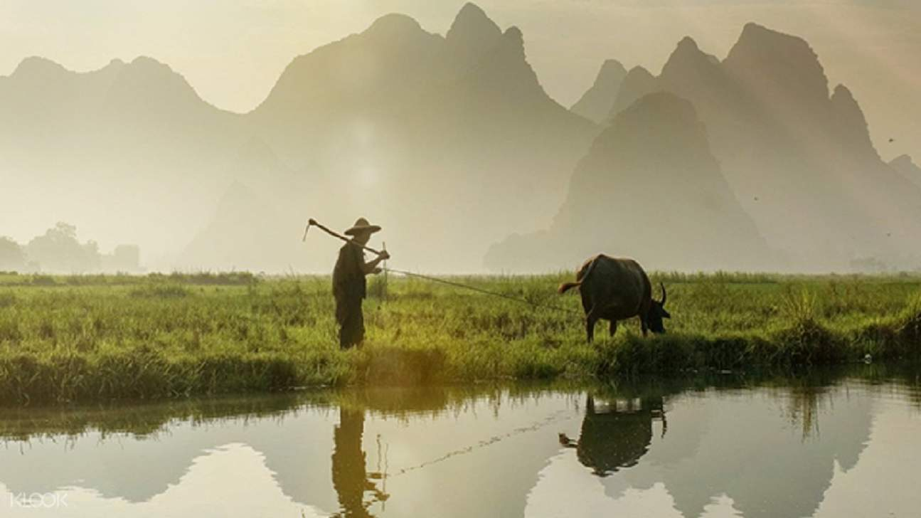 chinese farmer on the plains in yangshuo