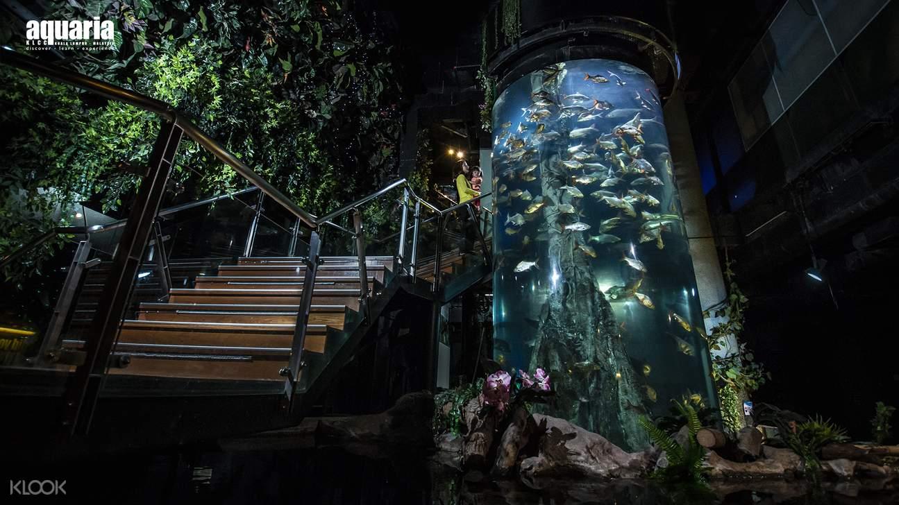 stairs at Aquaria KLCC