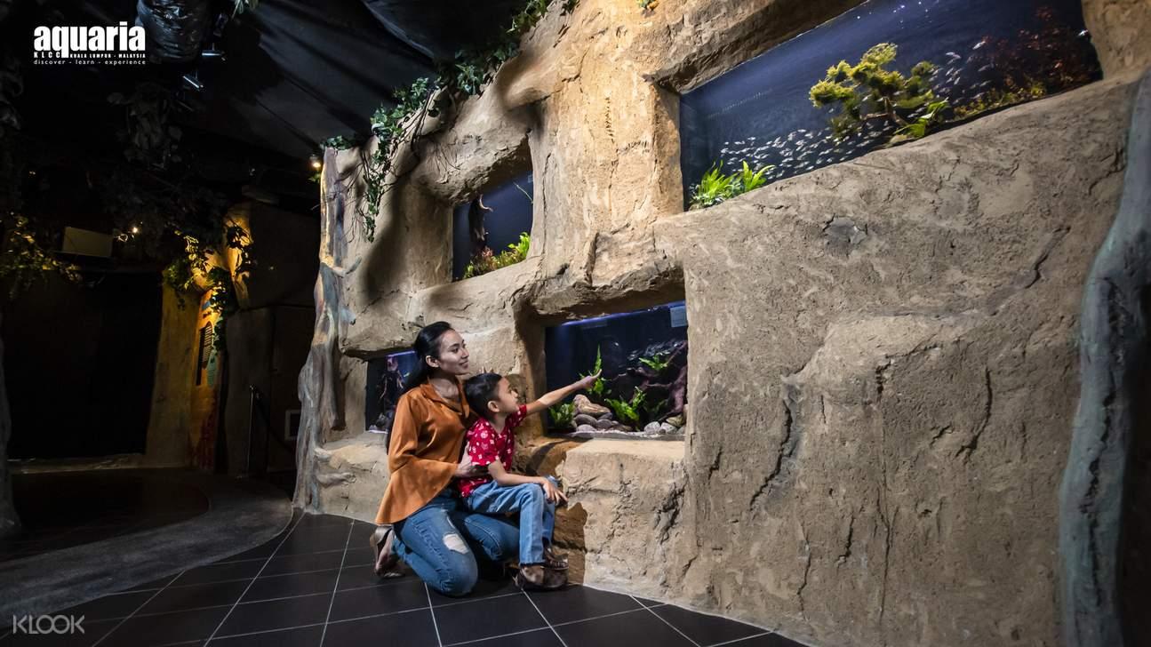 two people looking at the aquarium at Aquaria KLCC