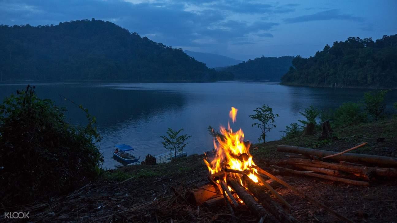 bonfire under stars