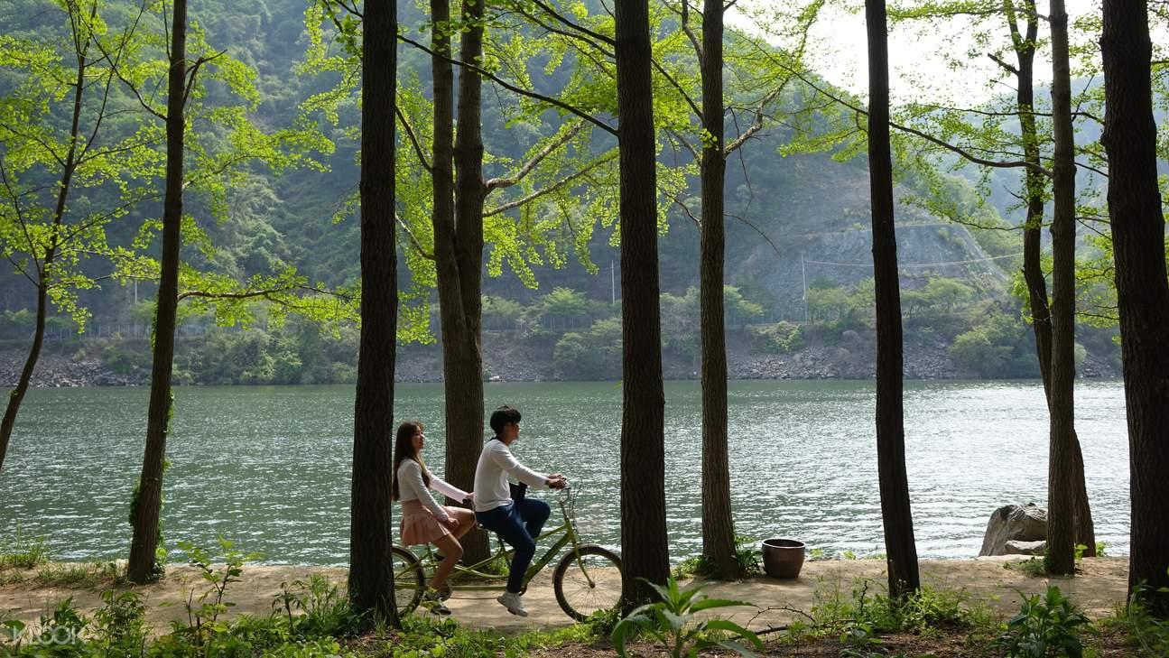 南怡島,鐵道自行車,小法國村,晨靜樹木園,江原道一日遊,韓劇一日遊