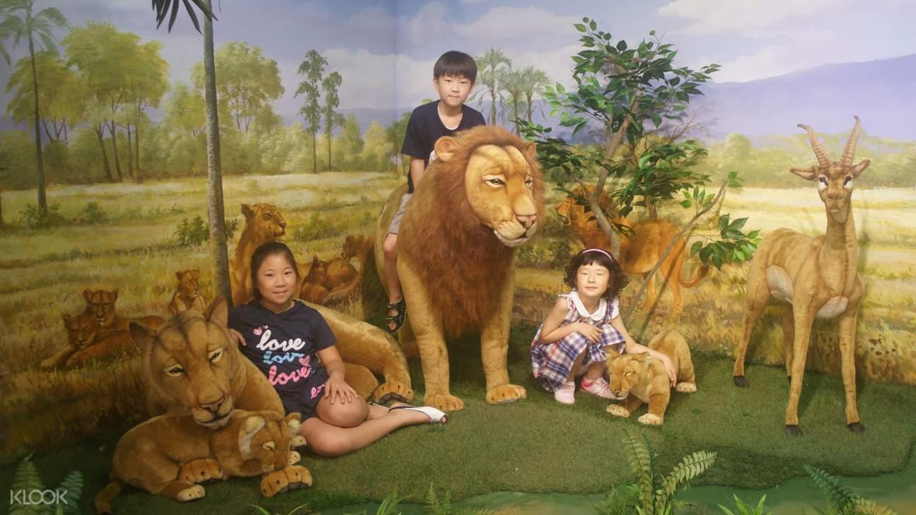 濟州島非洲博物館,濟州島博物館,濟州島展覽,濟州島旅遊,濟州島特色體驗