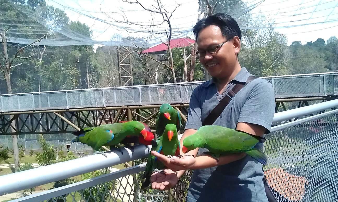 吉隆坡马六甲鸟园