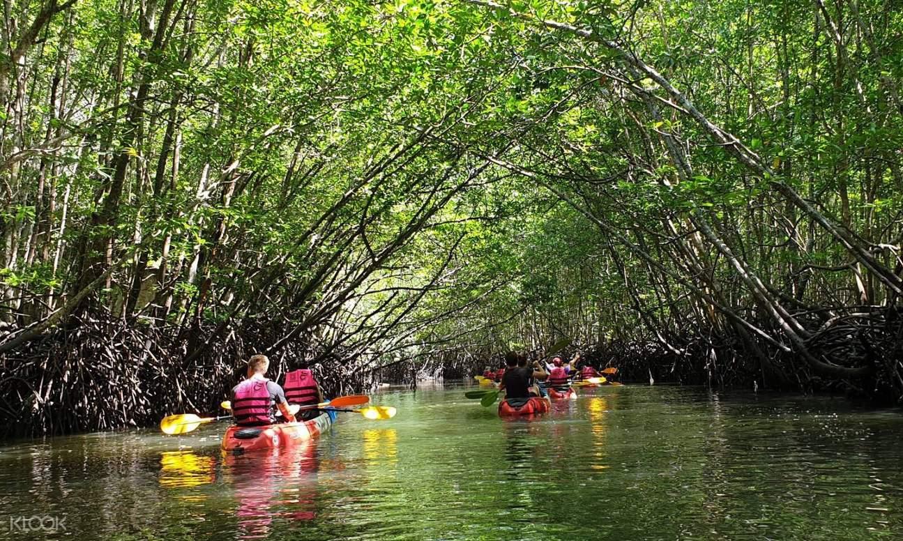 tourists kayaking through