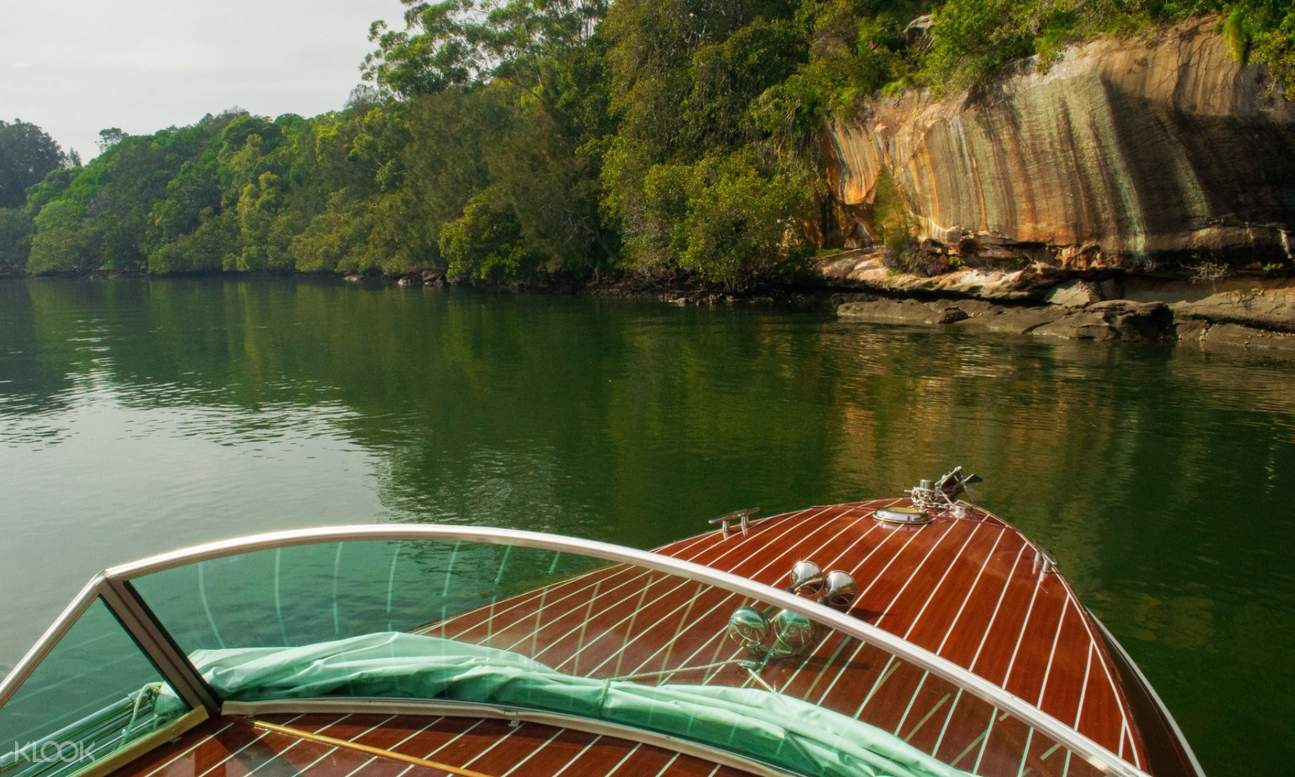 cruise going to lane cove national park